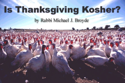 Turkey Kosher Thanksgiving