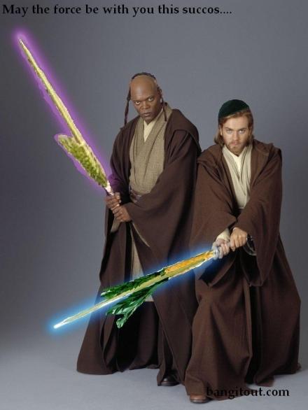 Star Wars Lulav